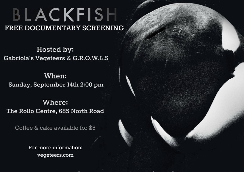 blackfish_single_copy